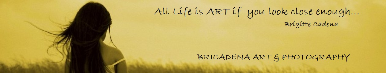 BRICADENA  ART